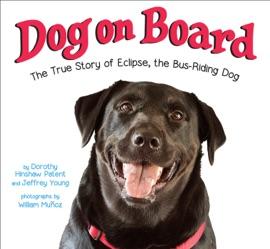 Dog On Board
