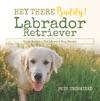 Hey There Buddy  Labrador Retriever Kids Books  Childrens Dog Books