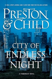City of Endless Night book summary
