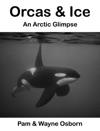 Orcas  Ice