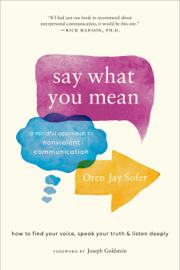 Say What You Mean book