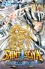 Saint Seiya - Les Chevaliers du Zodiaque - The Lost Canvas - La Légende d'Hadès - Tome 11