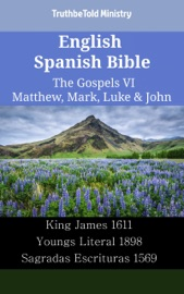 English Spanish Bible The Gospels Vi Matthew Mark Luke John