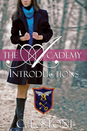 The Academy - Introductions - C. L. Stone book summary