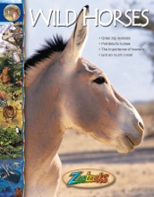 Zoobooks Wild Horses