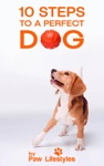 Dog Training 10 Steps To A Perfect Dog