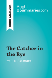The Catcher in the Rye by Jerome David Salinger (Book Analysis) Boekomslag