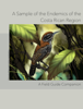 Noel UreГ±a ChacГіn - A Small Sample of the Endemic Birds of the Costa Rican Region ilustraciГіn