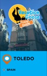 Vacation Goose Travel Guide Toledo Spain