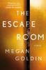 Megan Goldin - The Escape Room artwork