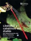 Liblulas Y Caballitos Del Diablo Del Departamento Del Meta Colombia