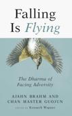 Falling is Flying