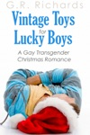 Vintage Toys For Lucky Boys A Gay Transgender Christmas Romance