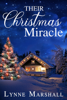 Lynne Marshall - Their Christmas Miracle  artwork