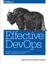 Effective DevOps