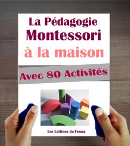 Le Manuel de la Pédagogie Montessori à la Maison. Explications, Conseils et 80 activités proposées. La couverture du livre martien