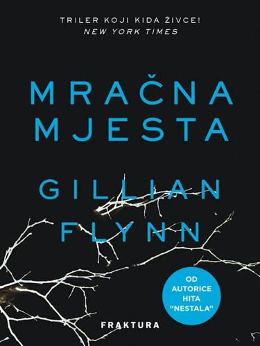 Gillian Flynn - Mračna mjesta