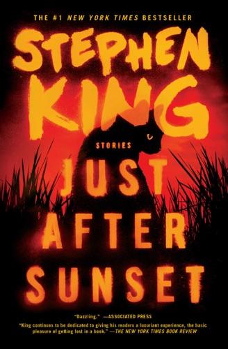 Stephen King - Just After Sunset