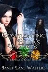 Confronting Erdas Wizards
