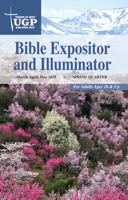 Bible Expositor and Illuminator - Union Gospel Press book