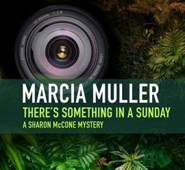 There's Something in a Sunday PDF Download