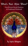Whats Next After Wicca Non-Wiccan Occult Practices And Traditional Witchcraft