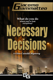 Necessary Decisions book summary