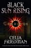 Celia Friedman - Black Sun Rising kunstwerk