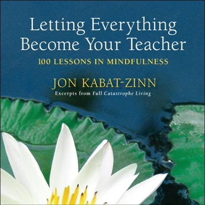 Jon Kabat-Zinn - Letting Everything Become Your Teacher book