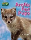 Arctic Fox Pups