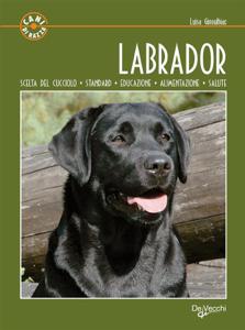 Labrador Libro Cover