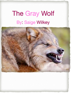 The Gray Wolf Book Review