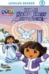 Doras Snowy Forest Adventure Dora The Explorer