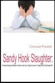 Sandy Hook Slaughter: The Newtown Shooting and Massacre in Connecticut - Adam Lanza. Thoughts and Lessons on a Tragedy and the Coming Paradigm Shift.