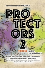 Protectors 2: Heroes PDF Download