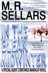 In The Bleak Midwinter A Special Agent Constance Mandalay Novel