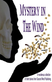 MYSTERY IN THE WIND
