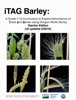 ITAG Barley: A Grade 7-12 Curriculum To Explore Inheritance Of Traits And Genes Using Oregon Wolfe Barley