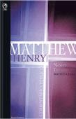 Comentário Bíblico - Novo Testamento Volume 1 Book Cover