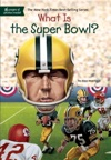 What Is The Super Bowl