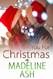 You for Christmas book summary