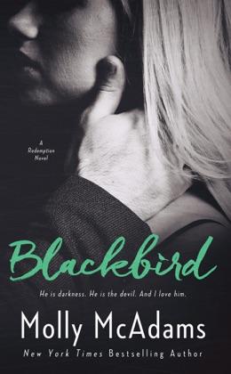 Blackbird image