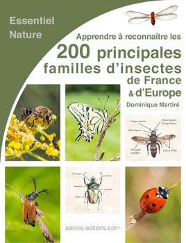 Insectes et Arachnides de France - Dominique Martiré