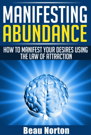 Manifesting Abundance: How to Manifest Your Desires Using the Law of Attraction book