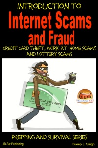 Introduction to Internet Scams and Fraud: Credit Card Theft, Work-At-Home Scams and Lottery Scams Book Cover