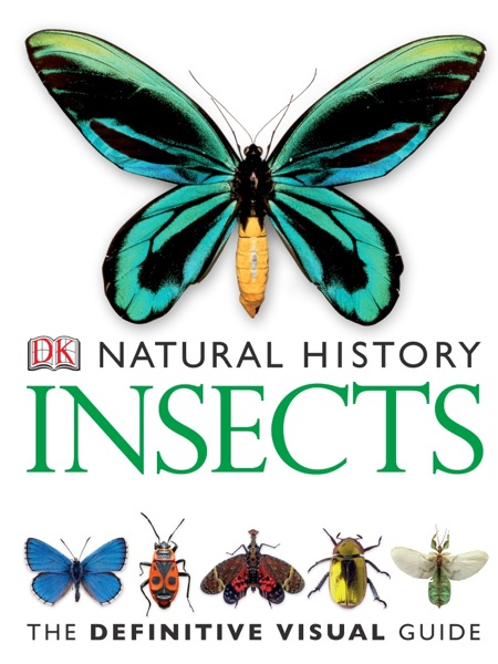 DK Natural History: Insects