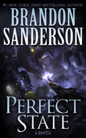 Perfect State PDF Download