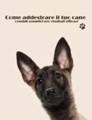 Come addestrare il tuo cane