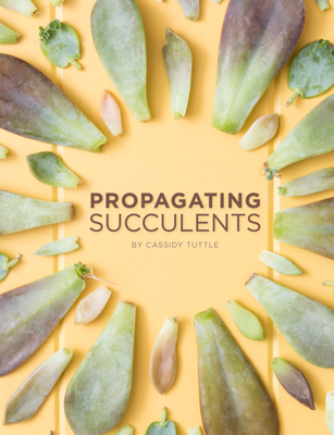 Propagating Succulents - Cassidy Tuttle book