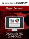 Documents And Dashboards For MicroStrategy Report Services